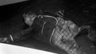 Charred, deformed, wooden doll corpse... Sweet dreams, kids.