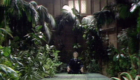 chase-meditating-in-his-plant-cathedral-seeds-of-doom-doctor-who-back-when