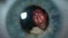 red-matt-smith-eleven-in-eyeball-crimson-horror-doctor-who-back-when