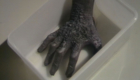 the-hand-of-eldrad-in-some-tupperware-hand-of-fear-doctor-who-back-when